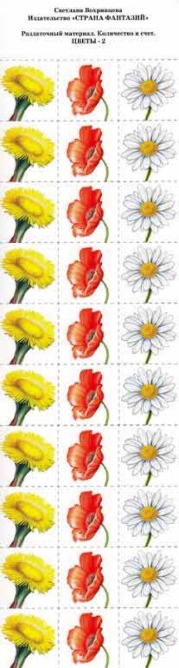 Раздаточный материал. Количество и счет Цветы 2Воспитателю ДОО<br>Размер вырезанной карточки: 4х4 см.Материал: картон.<br><br>Авторы: Вохринцева С. В.<br>Год: 2012<br>Высота: 340<br>Ширина: 120<br>Толщина: 1