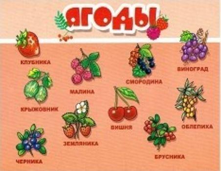 Плакат ЯгодыОформительские плакаты<br>Наглядное пособие познакомит малышей с фруктами.Для детей от 2-х лет.<br><br>Год: 2016<br>ISBN: 978-5-9780-0410-6<br>Высота: 205<br>Ширина: 265<br>Толщина: 1