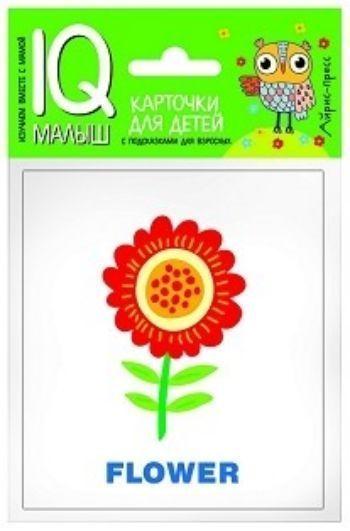 Растения. Набор карточек. Умный малышЗанятия с детьми дошкольного возраста<br>Набор карточек Растения знакомит ребенка со словами на английском языке, обозначающими растения и их части, цветы, грибы, способствует расширению словарного запаса.В набор входят 18 карточек с цветными картинками, карточка Словарик и инструкция для ро...<br><br>Год: 2017<br>ISBN: 978-5-8112-5721-8<br>Высота: 90<br>Ширина: 80<br>Толщина: 5