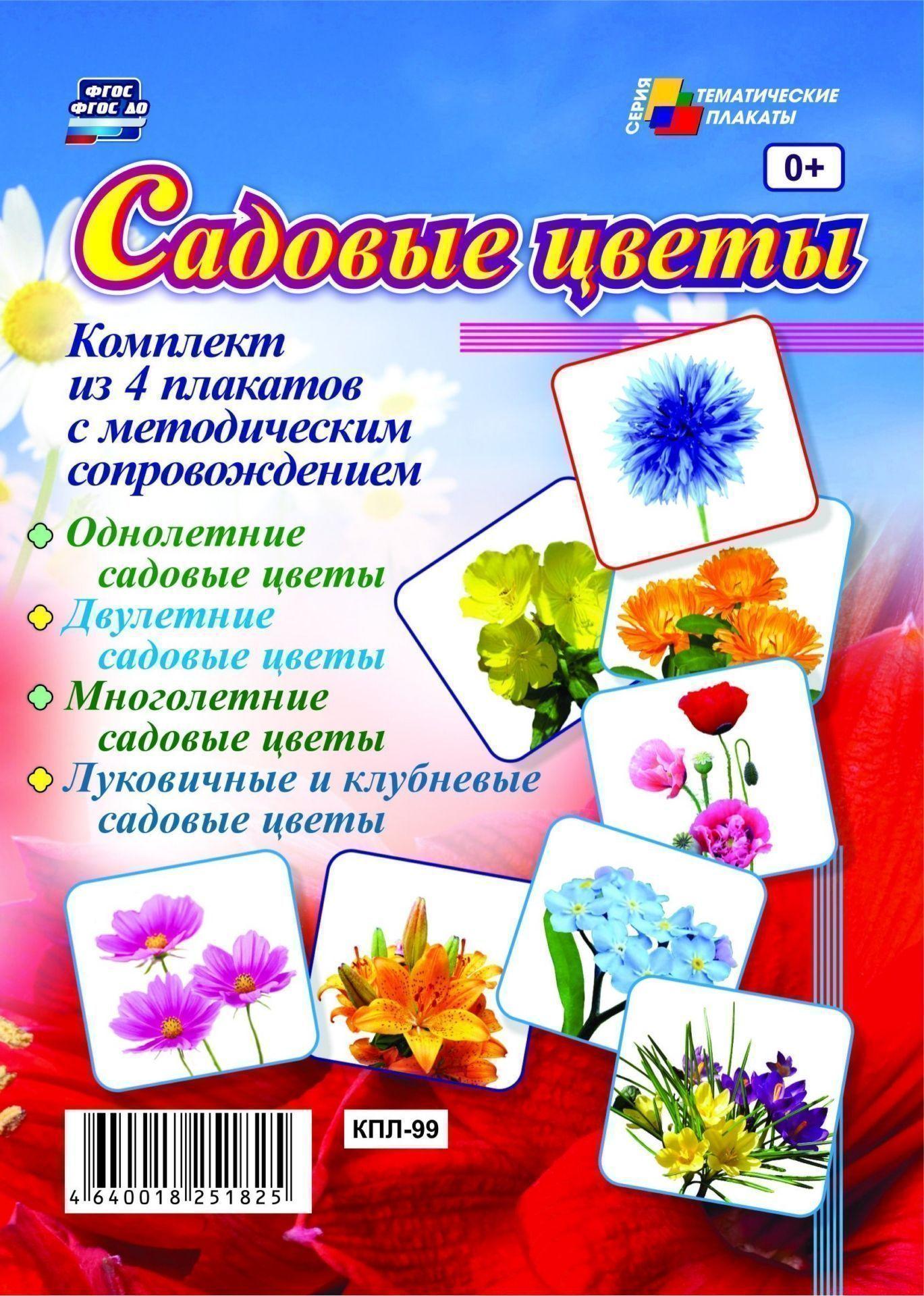 Комплект плакатов Садовые цветы: 4 плаката с методическим сопровождениемИнформационно-деловое оснащение ДОО<br>.<br><br>Год: 2017<br>Серия: Тематические плакаты<br>Высота: 297<br>Ширина: 420