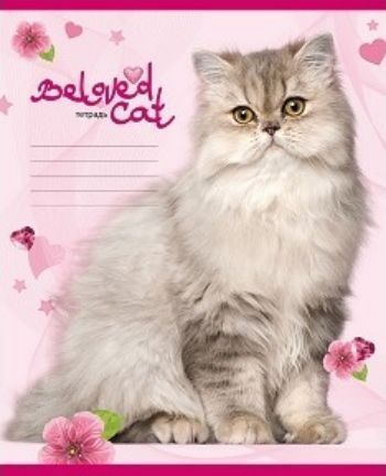 Тетрадь Большие кошки, клетка, 12 л.12 листов<br>Тетрадь в клетку, на обратной стороне таблица умножения.<br><br>Год: 2017<br>Высота: 205<br>Ширина: 165<br>Толщина: 2<br>Переплёт: мягкая, скрепка