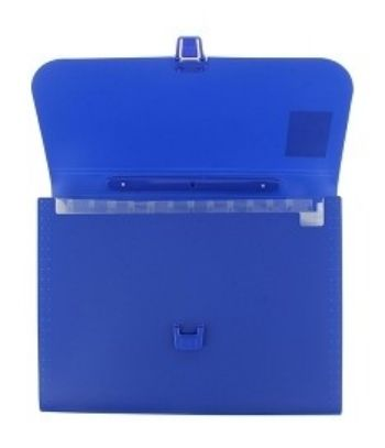 Портфель пластиковый Erich Krause, синий, А4Папки<br>Портфель позволяет удобно рассортировать по отделениям документы формата А4, 12 отделений.Материал: пластик.<br><br>Год: 2017<br>Высота: 230<br>Ширина: 320<br>Толщина: 30