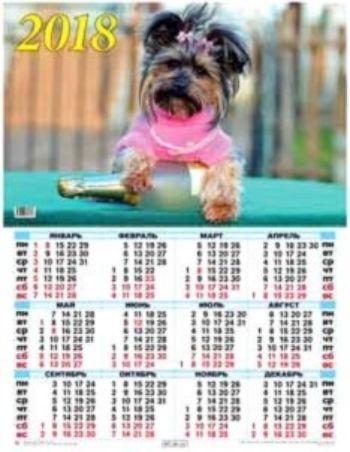 Календарь настенный Год собаки 6 2018Календарь-плакат<br>Вашему вниманию предлагается настенный календарь на 2018 год.Формат А2.<br><br>Год: 2017<br>Высота: 585<br>Ширина: 440<br>Толщина: 1