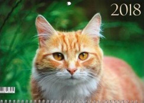 Календарь настенный одноблочный Домашние любимцы. Рыжий кот 2018Календари квартальные<br>Вашему вниманию предлагается квартальный одноблочный календарь с курсором на 2018 год. Длина календаря в развернутом виде 41,5 см.<br><br>Год: 2017<br>Высота: 210<br>Ширина: 305<br>Толщина: 2