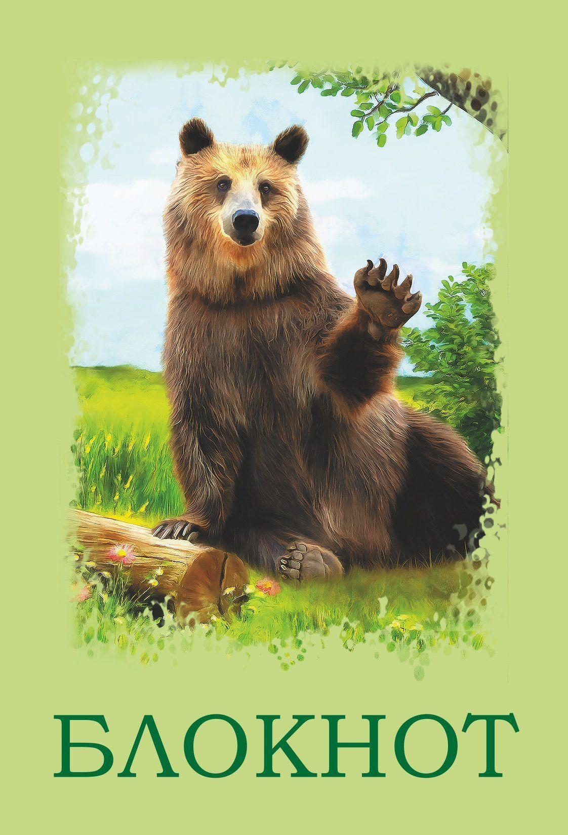 Блокнот (с изображением медведя)Блокноты, ежедневники, тетради<br>Формат А6.Вид линовки: чистый лист.<br><br>Год: 2017<br>Высота: 97<br>Ширина: 140<br>Толщина: 1<br>Переплёт: мягкая, скрепка