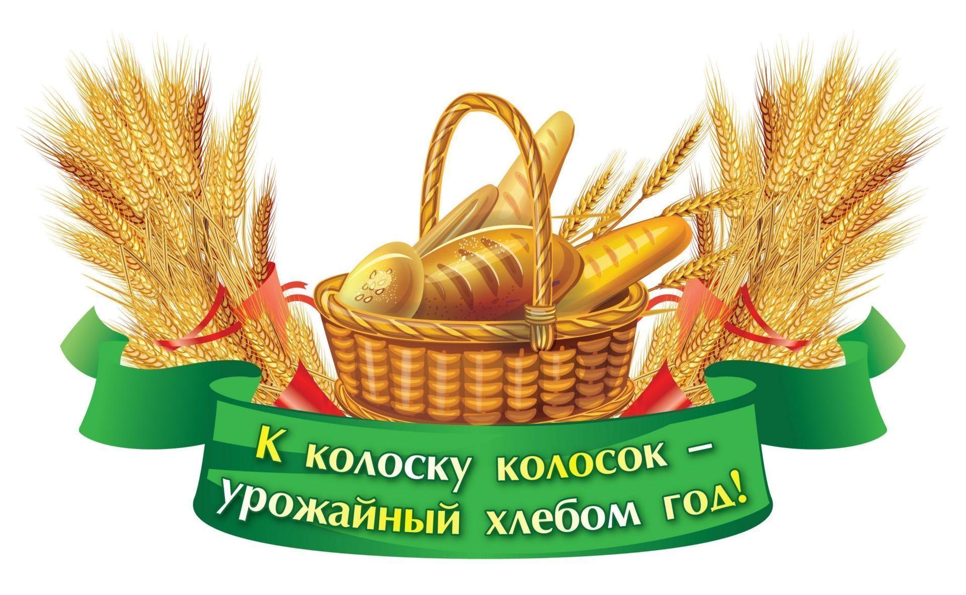 Плакат вырубной Золотые хлебные колосья: 256х397Товары для оформления и проведения праздника<br>.<br><br>Год: 2017<br>Серия: Вырубные фигуры для оформления<br>Высота: 397<br>Ширина: 256<br>Переплёт: набор