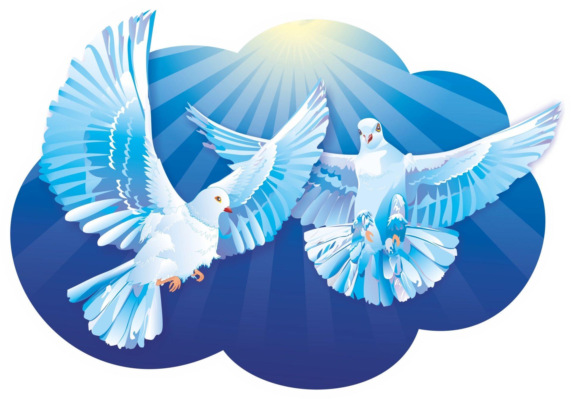 Плакат вырубной Пара голубков: 294х419Товары для оформления и проведения праздника<br>.<br><br>Год: 2017<br>Серия: Вырубные фигуры для оформления<br>Высота: 419<br>Ширина: 294<br>Переплёт: набор