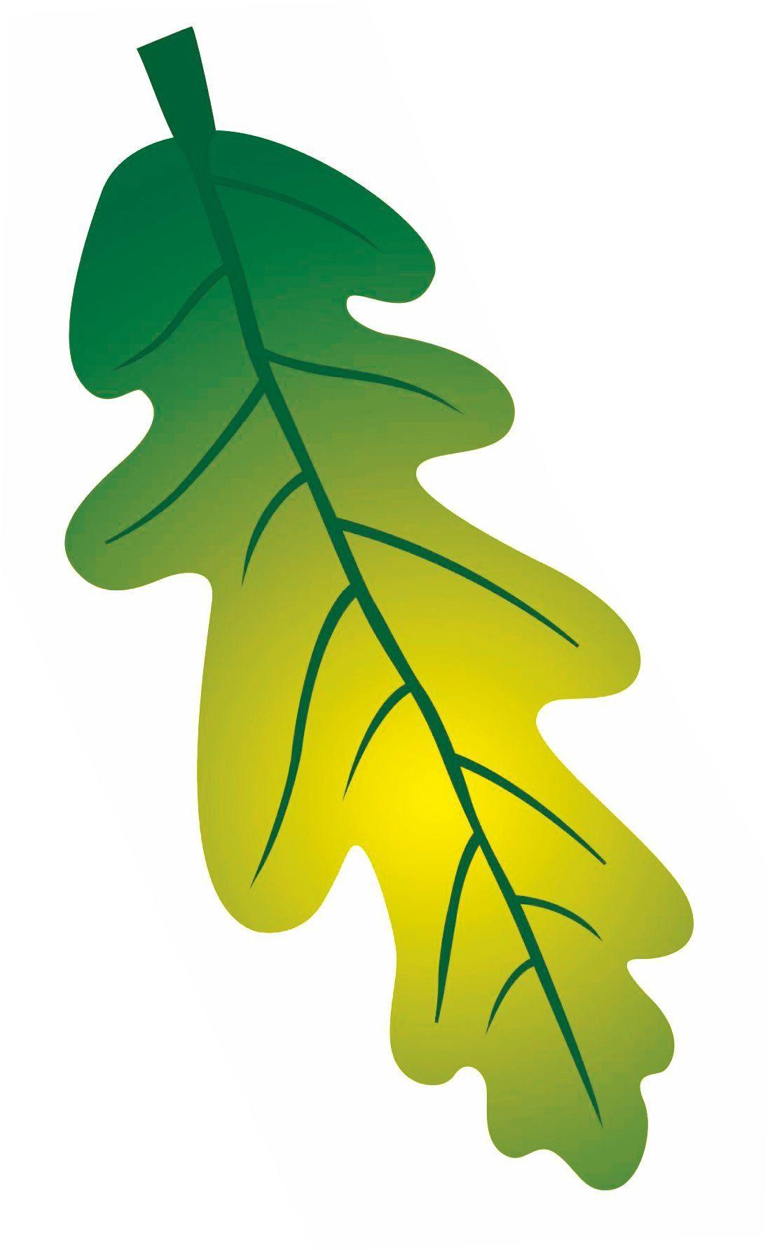 Мини-плакат вырубной Лист дуба зеленый: 144х51 ммВырубные фигуры<br>.<br><br>Год: 2017<br>Серия: Вырубные фигуры для оформления<br>Высота: 51<br>Ширина: 144<br>Переплёт: набор