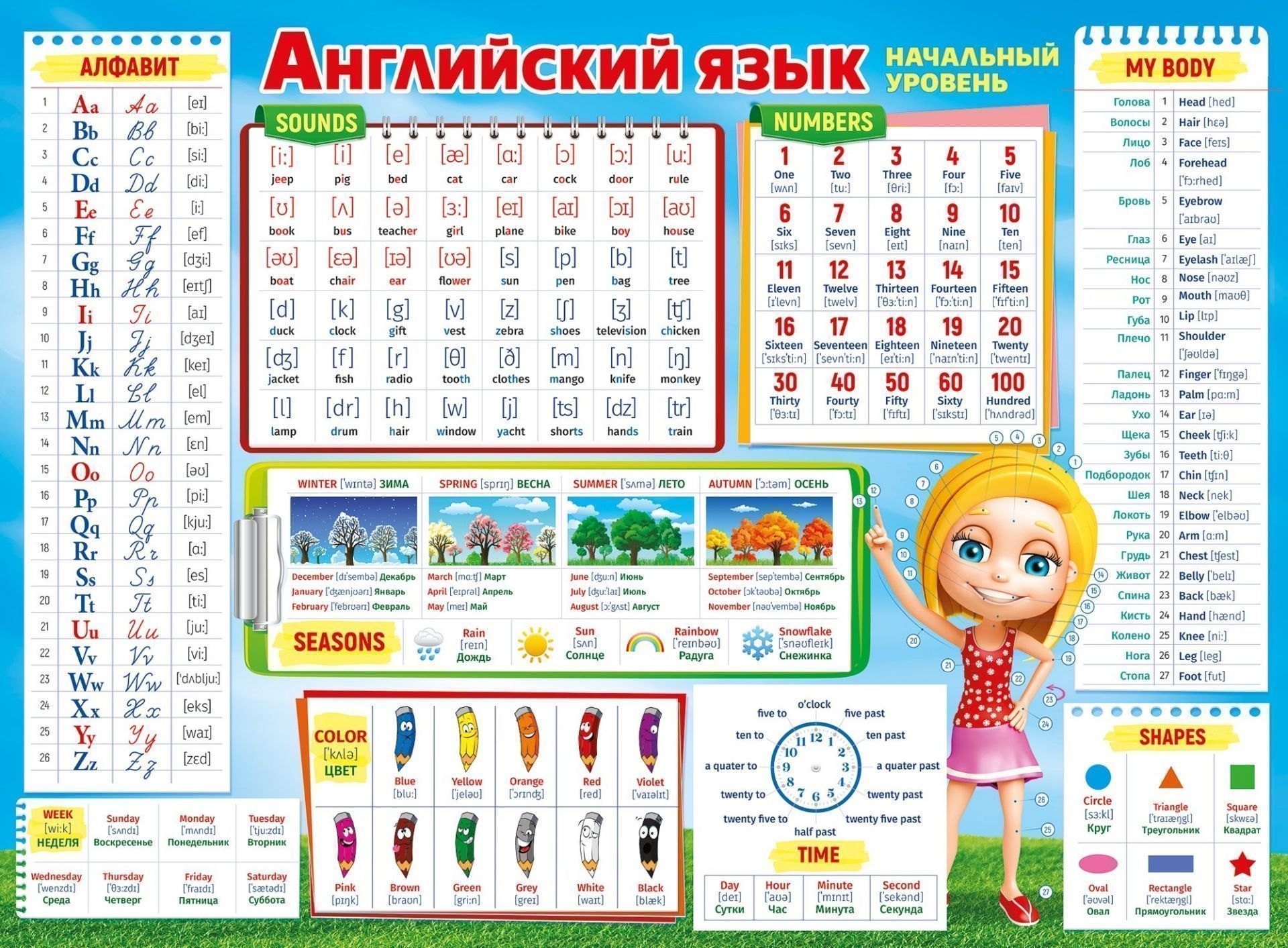 Плакат Английский язык. Начальный уровеньУчащимся и абитуриентам<br>Плакат разработан для того, чтобы помочь детям в изучении основ английского языка. На плакате есть информация по основным правилам английского языка.Формат А2. Материал: картон.<br><br>Год: 2017<br>Высота: 440<br>Ширина: 600<br>Толщина: 1