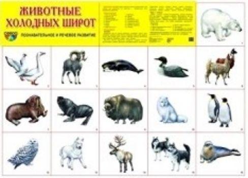 Плакат Животные холодных широтОформительские плакаты<br>Демонстрационный материал в виде плаката обязательно пригодится для развития ребенка дома, в дошкольном учреждении или школе. Данный плакат расскажет о животных холодных широт.Благодаря красочным картинкам вам будет удобно объяснять конкретные термины или...<br><br>Год: 2018<br>Высота: 490<br>Ширина: 690<br>Толщина: 1