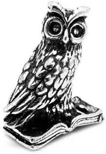 Кошельковая соваТалисманы, обереги<br>Предлагаем вашему вниманию кошельковые денежные сувениры - прекрасный выбор для тех, кто хочет сделать запоминающийся презент родным и близким.Размер совы - 15х20 мм.Материал: металл.<br><br>Год: 2016