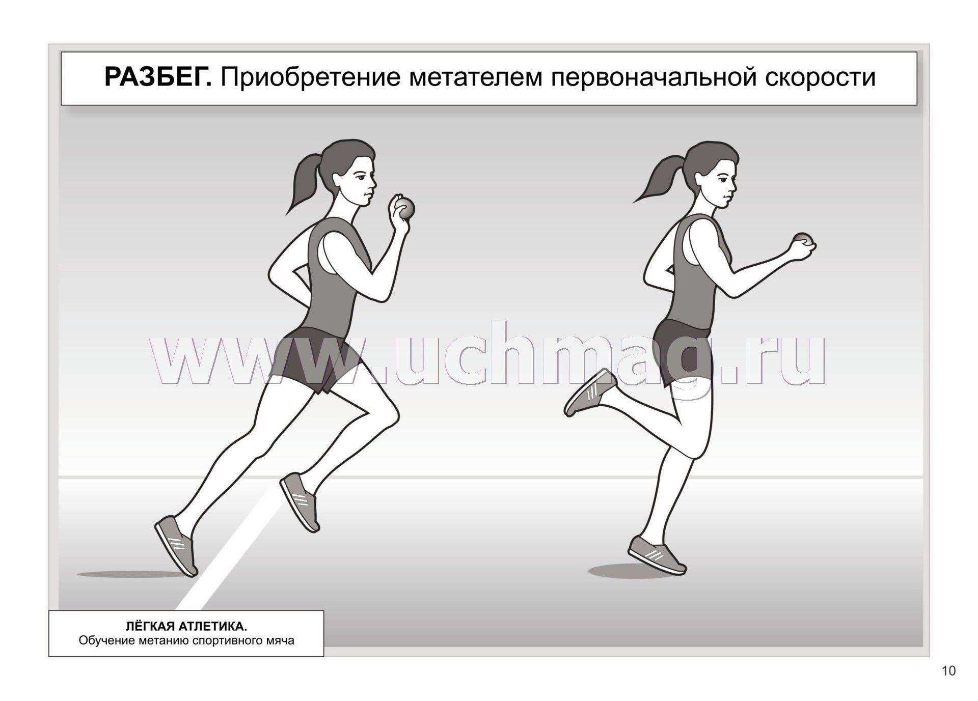курсы спортивного диетолога