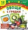 Овощи с грядки: 12 цветных карточек. Стихи и загадки