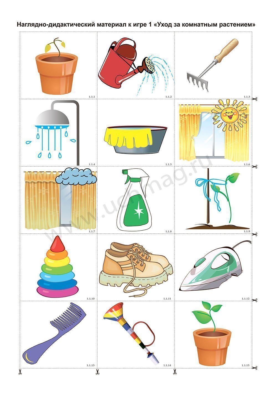 познакомить с растениями в детском саду
