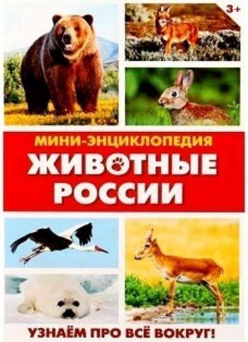 """Мини-энциклопедия """"Животные России"""""""