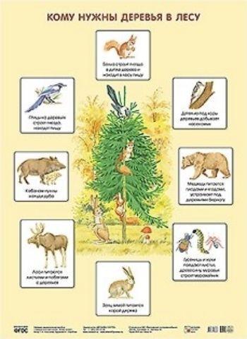 Плакат Кому нужны деревья в лесу