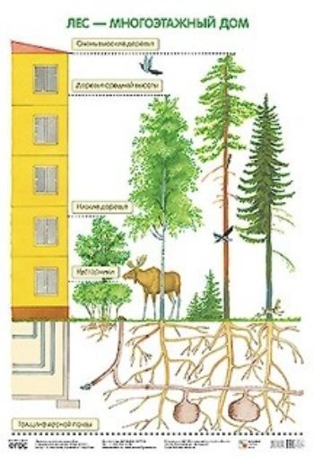 Плакат Лес - многоэтажный дом