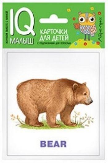 Зоопарк. Набор карточек. Умный малышЗанятия с детьми дошкольного возраста<br>Набор Зоопарк знакомит ребенка со словами на английском языке, обозначающими диких животных и птиц, способствует расширению словарного запаса.В набор входят 14 карточек с цветными картинками, карточка Словарик и инструкция для родителей.Предназначен д...<br><br>Год: 2017<br>ISBN: 978-5-8112-6611-1<br>Высота: 90<br>Ширина: 80<br>Толщина: 7