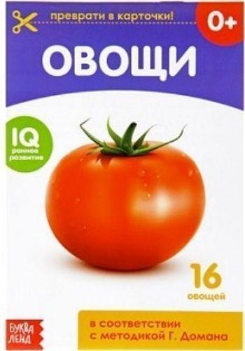 Обучающая книжка Овощи
