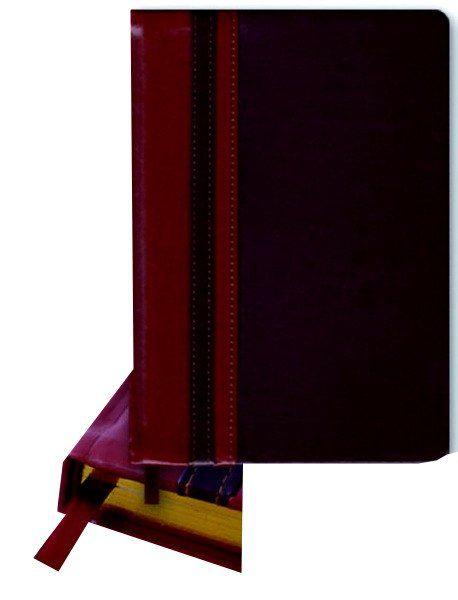 Ежедневник недатированный Сариф, светло-коричневый-коричневый, А5Формат А5<br>Ежедневник недатированный, линейка, 320 стр., золотой срез, ляссе.<br><br>Год: 2017<br>Высота: 210<br>Ширина: 145<br>Толщина: 20