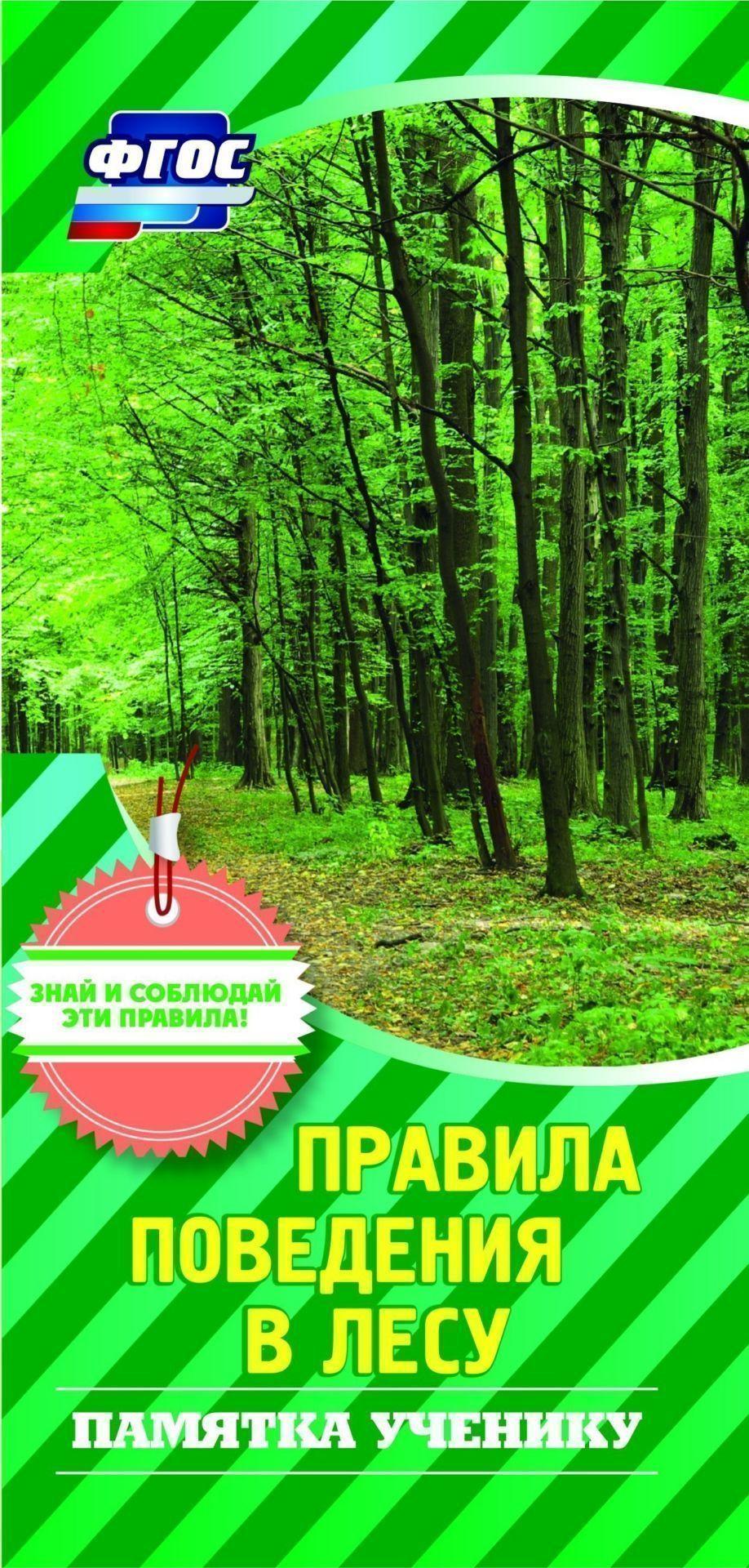 Памятка ученику Правила поведения в лесу