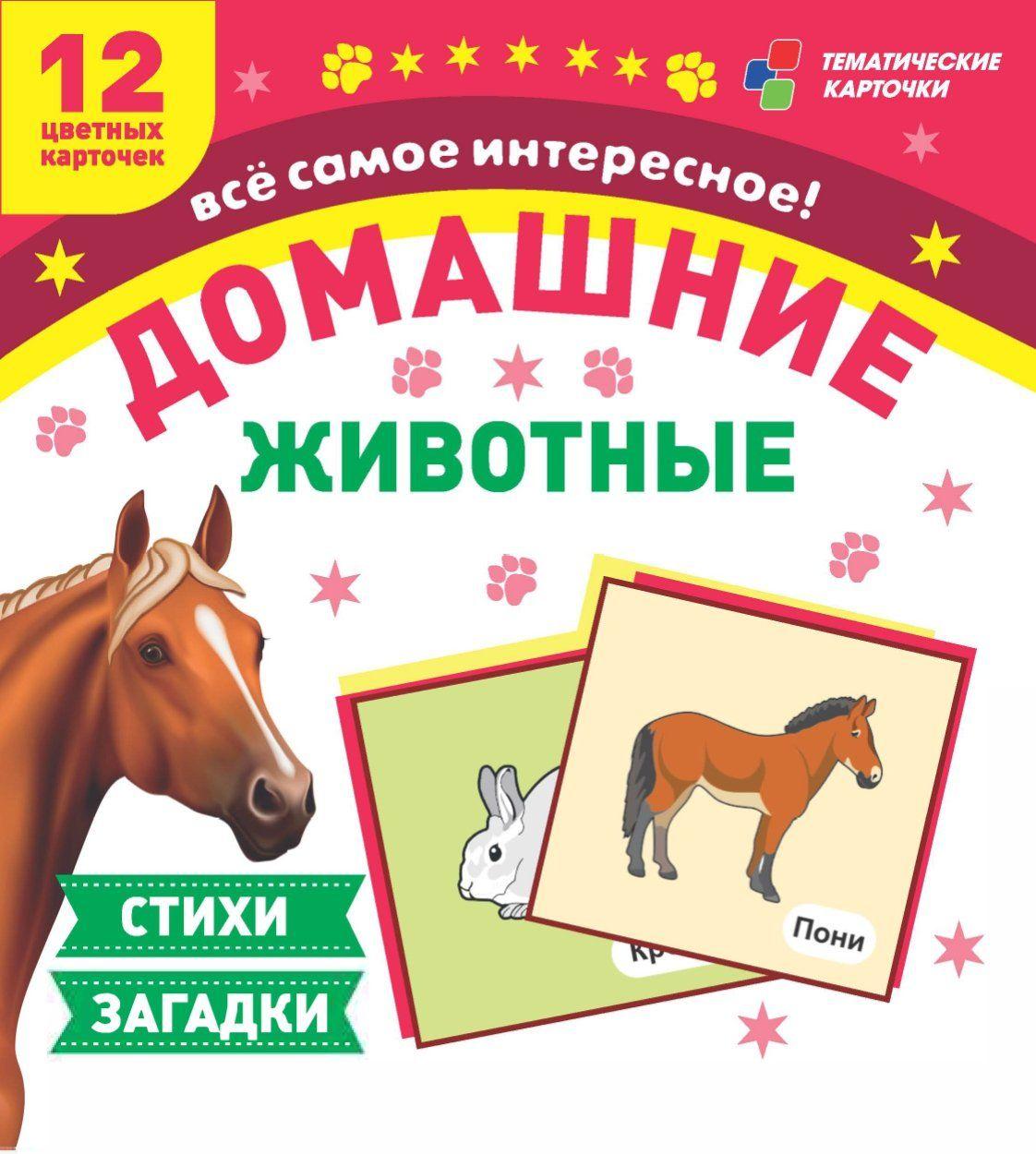 Домашние животные: 12 развивающих карточек с красочными картинками, стихами и загадками для занятий с детьмиРазвитие дошкольника<br>.<br><br>Год: 2018<br>Серия: Тематические карточки<br>Высота: 99<br>Ширина: 93<br>Толщина: 8<br>Переплёт: набор