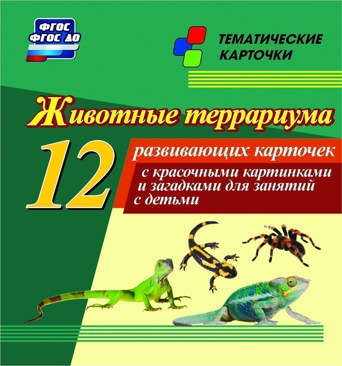 Животные террариума: 12 развивающих карточек с красочными картинками и загадками для занятий детьми.