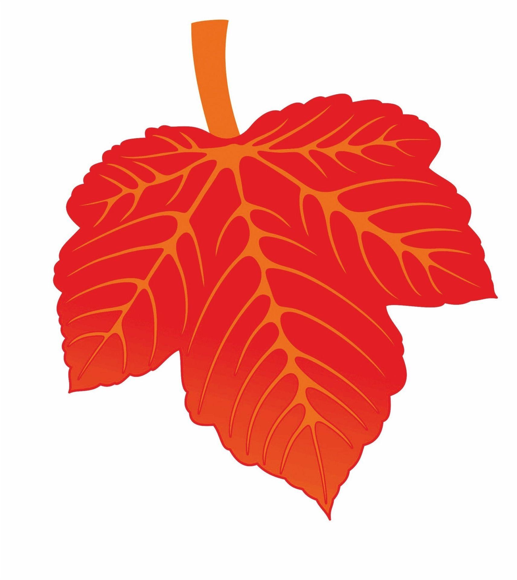 Мини-плакат вырубной Лист винограда красный: 134х155 ммВырубные фигуры<br>.<br><br>Год: 2018<br>Серия: Вырубные фигуры для оформления<br>Высота: 155<br>Ширина: 134<br>Переплёт: набор