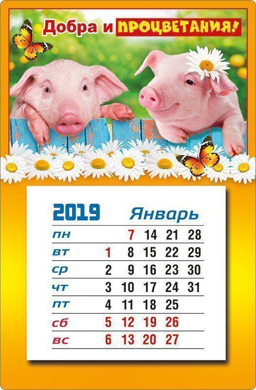 """Календарь магнитный """"Добра и процветания!"""" 2019"""