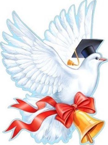 Анимацией, картинки голуби для детей в детском саду