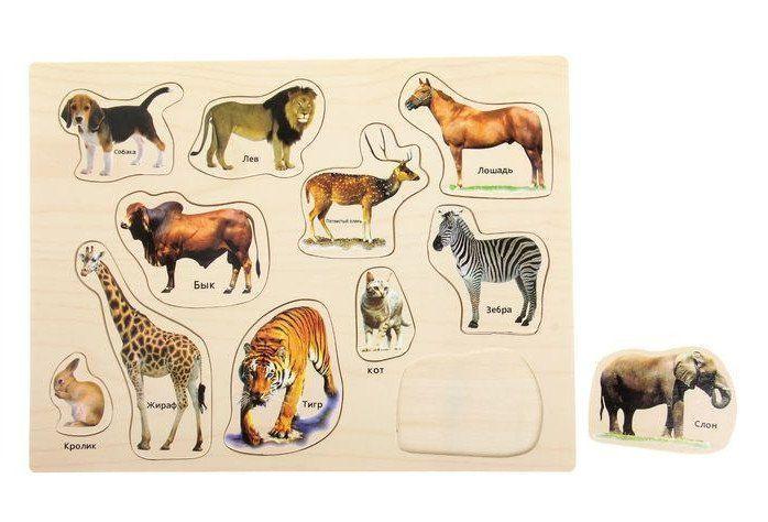 Рамка-вкладыш Мир животных