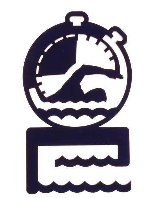 """Медальница """"Плавание"""""""