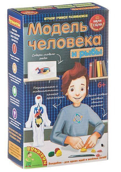 Купить со скидкой Модель человека. Японские научно-познавательные опыты Науки с Буки Вondibon