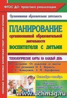Планирование организованной образовательной деятельности воспитателя с детьми
