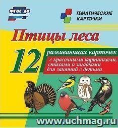 Птицы леса: 12 развивающих карточек с красочными картинками, стихами и загадками для занятий с детьми