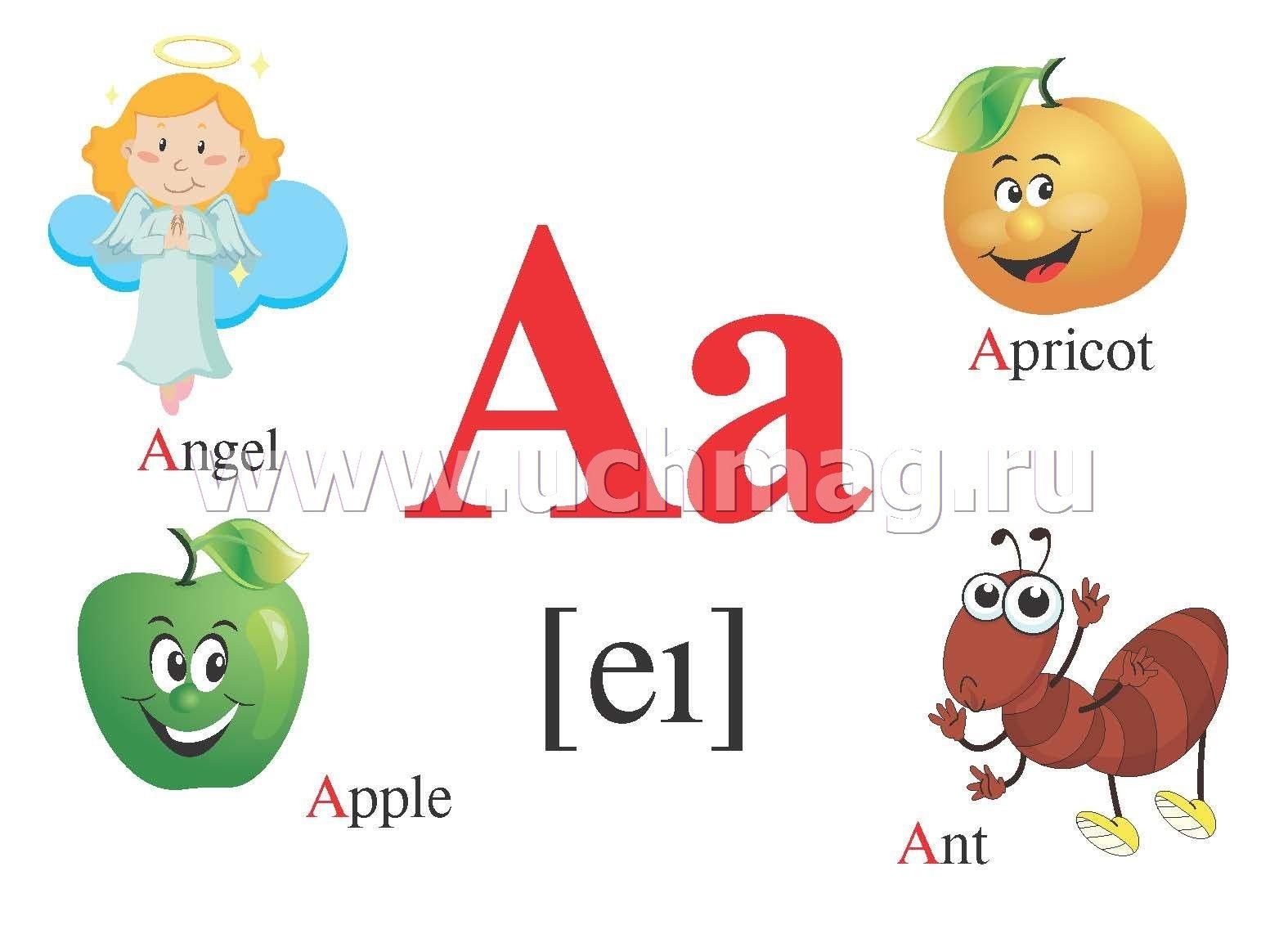 Английский алфавит: 32 цветные карточки со стихами ...